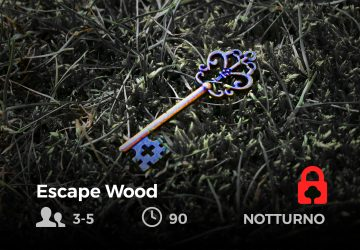 Escape Wood - future is nature playground