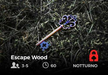 didascalia-escape-wood-future-is-nature-playground