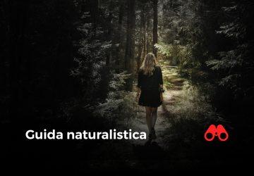 guida naturalistica future is nature playground